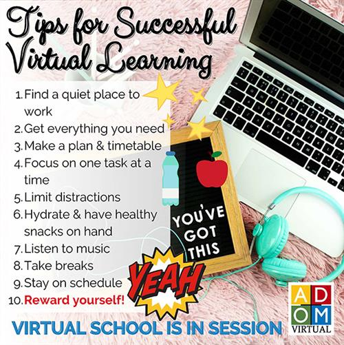 Tips for successful virtual learning.