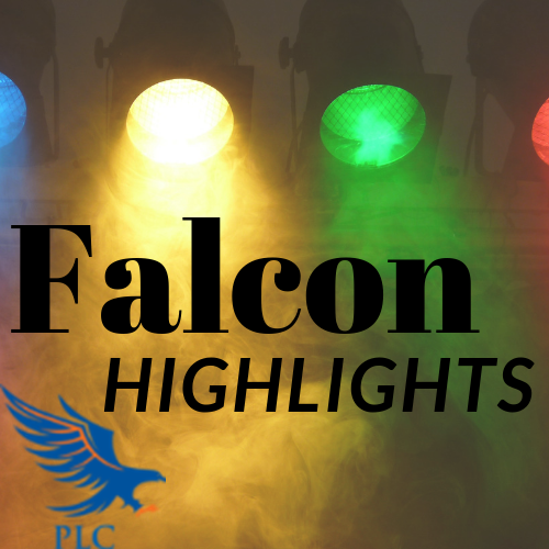 Falcon Highlights