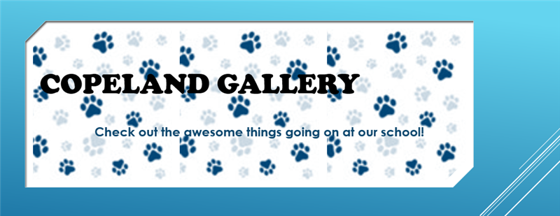 gallery banner